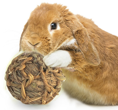 Rabbit Grass Ball Toy
